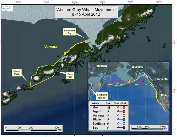 Varvara's travels March 4-11, 2012