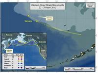 Varvara's travels April 22-29, 2012