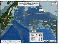 Map of Varvara's travels as of Feb. 16, 2012.