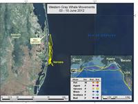 Map of Varvara's travels June 3-10, 2012