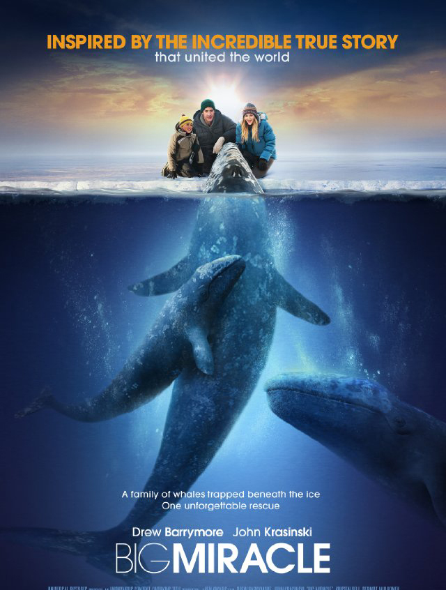 Poster for the motion picture called Big Miracle.