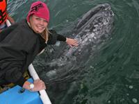 Chelsea touches a baby gray whale in Laguna Ojo de Liebre.