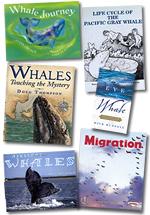 Gray Whale Trade Books