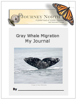 Journal Cover: Gray Whale Migration My Journal