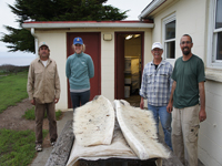 Scientists shown with baleen from a whale