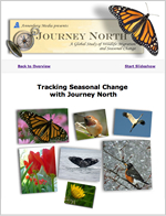 Tracking Seasonal Change With Journey North