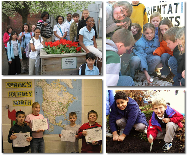 Students share observations with Journey North