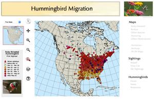 Hummingbird Migration Map