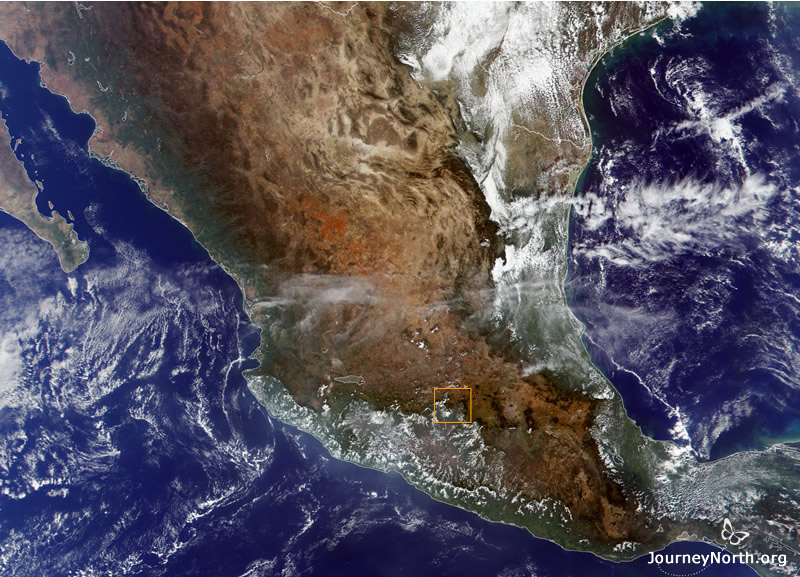 Satellite image of Mexico, with monarch butterfly overwintering region marked in orange.