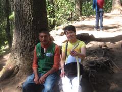 A Trip to the Monarch Sanctuary