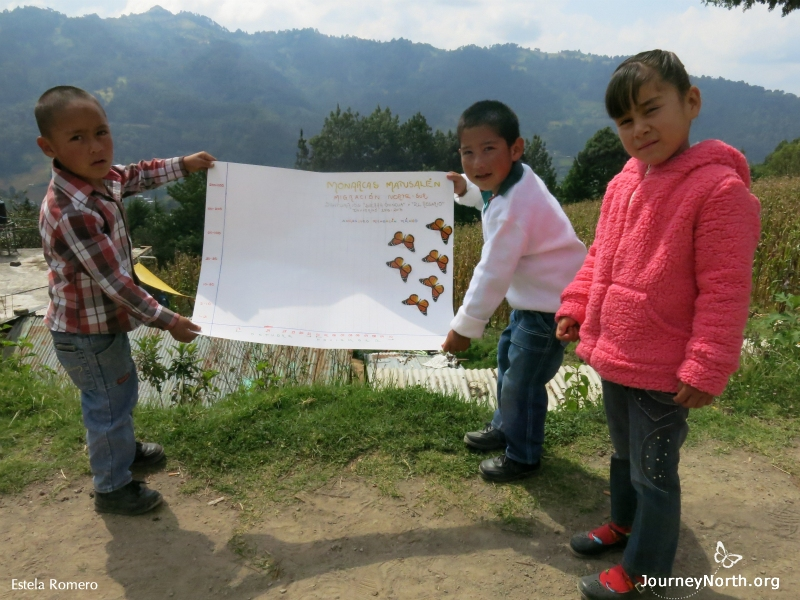 Children monitoring in Mexico waiting for monarch arrival.