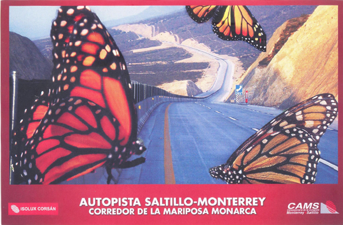 Road sign along monarch buttefly migration route in Mexico.