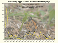 Graph: Monarch butterfly eggs: How many eggs can one monarch butterfly lay?