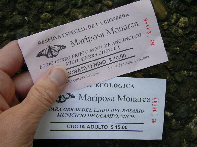 Tickets to Monarch Butterfly sanctuary in Mexico