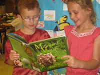 Reading Milkweed Visitors