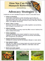 Monarch Conservation Advocacy