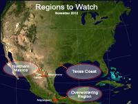 Regions to Watch