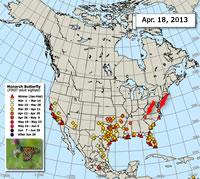 Animated Map: Milkweed Emergence Spring 2011 vs. 2012