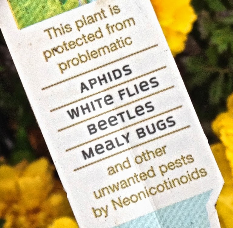 warning tag to butterfly gardeners that plants treated with neonicotenoids