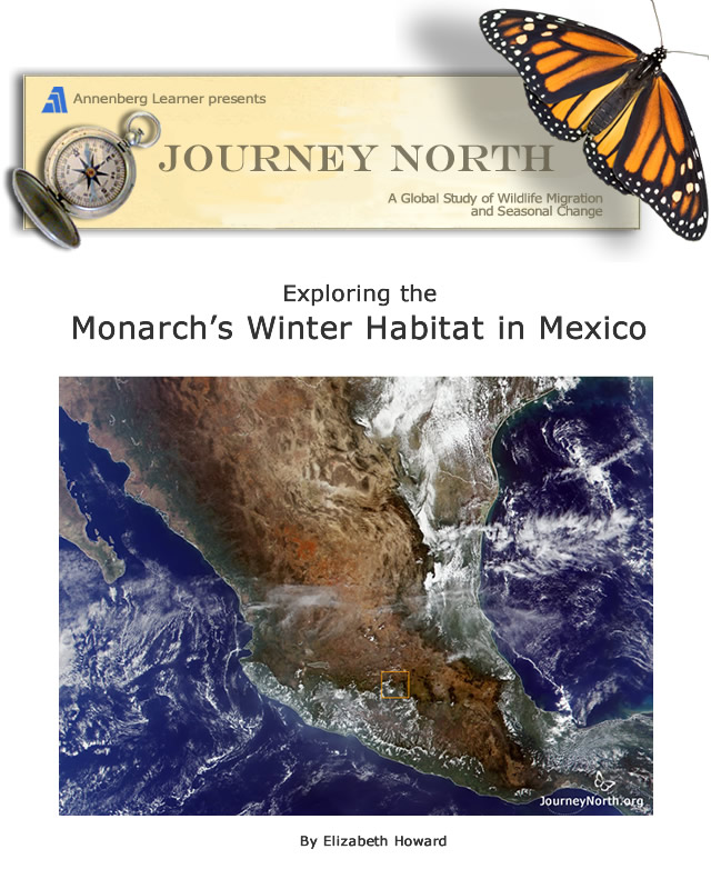 Monarch Butterfly Migration to Mexico