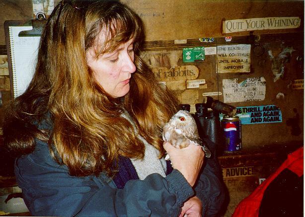 Laura Erickson holding a saw-whet owl