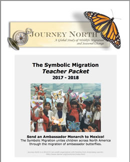 Journey North Symbolic Monarch Migration
