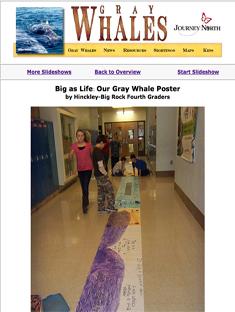 Gray whale nursery