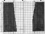 Fineman graph