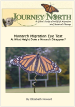 How high see Monarch Butterfly