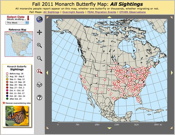 Explore Journey South's Live Monarch Migration Maps!