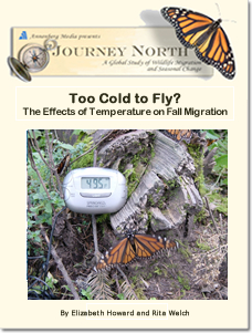 Too Cold to Fly? The Effects of Temperature on Fall Migration