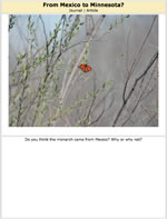 Monarch Butterfly Journal Page