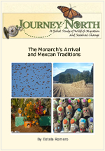 Monarch's Arrival and Mexican Traditions