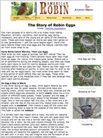 The Story of Robin Eggs