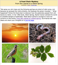 Image of Food Chain Mystery Lesson