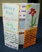 tulip_portfolio02