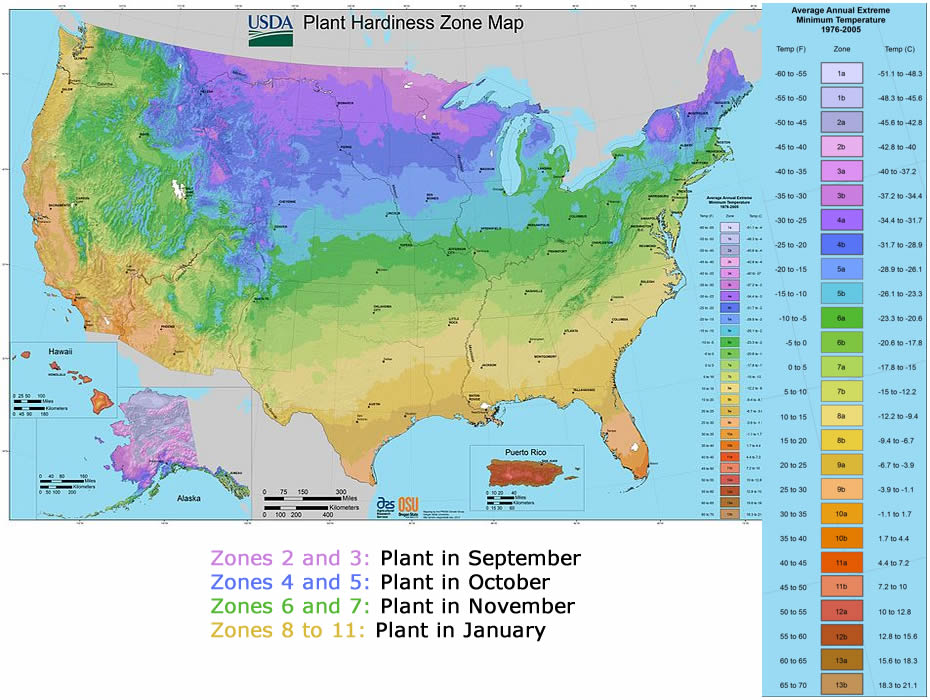 planting zone map