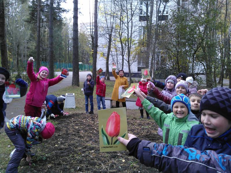 Journey North Tulip Test Gardens: Fall 2015