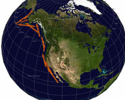 Gray Whale Migration Route