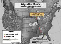 Fall 2014 crane migration map
