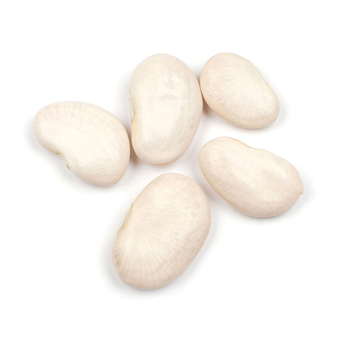 Giant Lima Beans