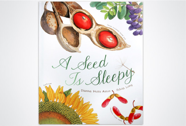 "<p><em><strong>A Seed Is Sleepy</strong></em>, <a href=""http://www.chroniclebooks.com"">Chronicle Books</a>, 2007. Cover design.</p>"