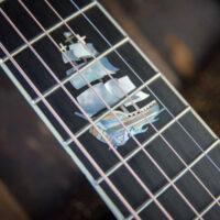 thompson-guitars-brazilian-rosewood-0000-9