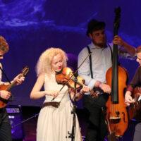 Curly Strings at EWOB 2017 - photo by Patrick Kelderman