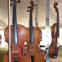 Fiddles for sale at the 2017 Oklahoma International Bluegrass Festival - photo by Pamm Tucker