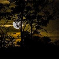 Moonrise at The Festy, 2017 - photo by Gina Elliott Proulx