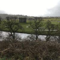 Irish countryside (March 2018)