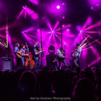 Infamous Stringdusters at DelFest 2018 - photo by Marisa Muldoon