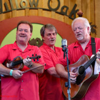David Parmley & Cardinal Tradition at the 2018 Willow Oak Bluegrass Festival - photo © Beckie Howard