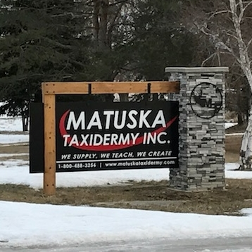 Matuska Taxidermy in Spirit Lake